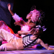 Link to A Midsummer Night's Dream – Artscape Theatre 2012